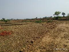 Jharkhand's Land Bank: Injustice to Adivasis Continues